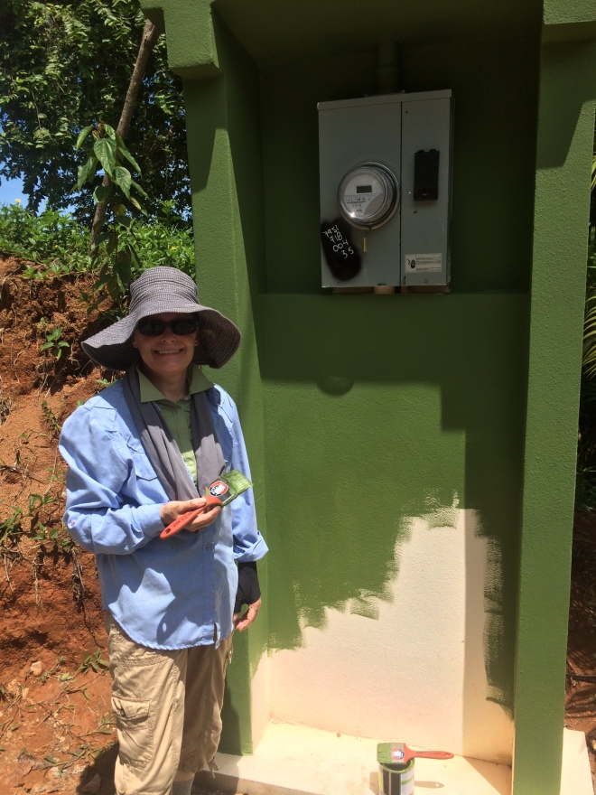 Ellen painting the column for the electric meter.