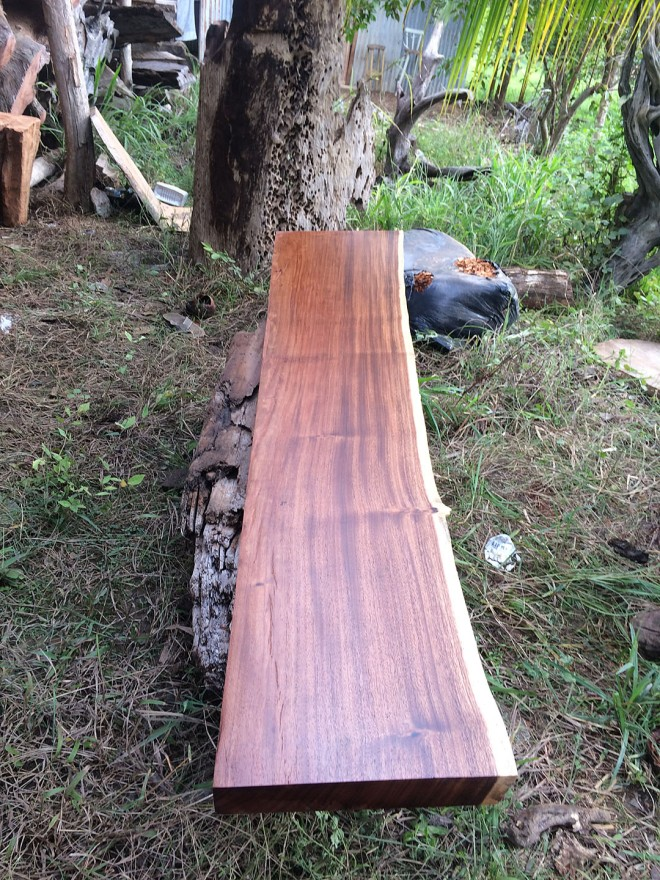 This slab will be the shelf above the kitchen bar (also from the same tree as the bathroom counter top).